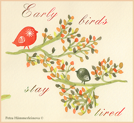 greeting cards birds by petra haemerleinova