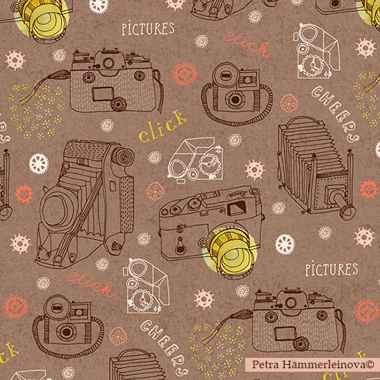 cameras-by-Petra-Haemmerleinova