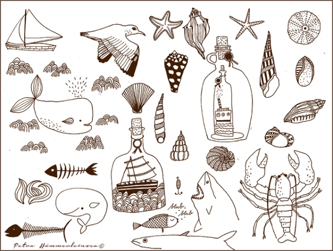 Nautical sketches by Petra Hämmerleinova©